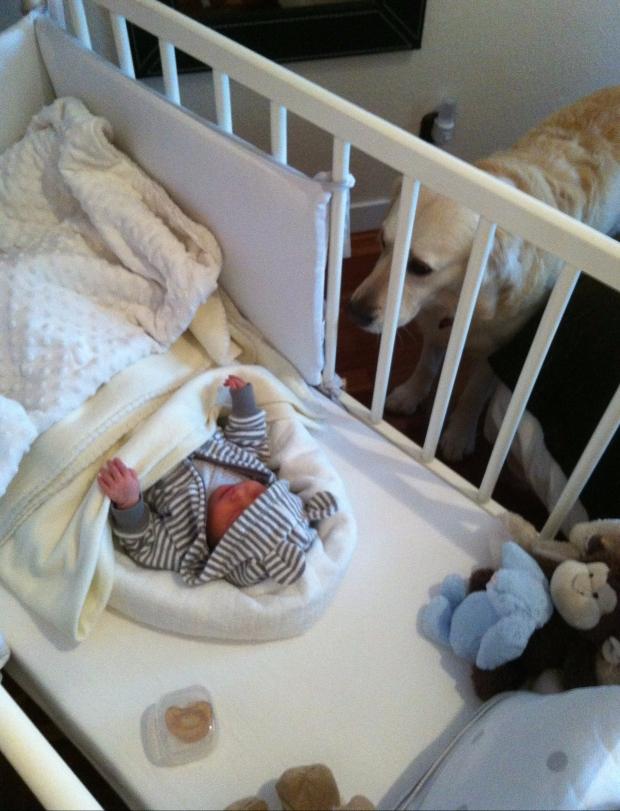 crib-cuna-sueño-bebe-baby-reciennacido-babyborn-newborn